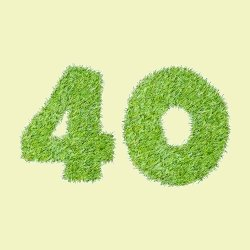 40 written in grass