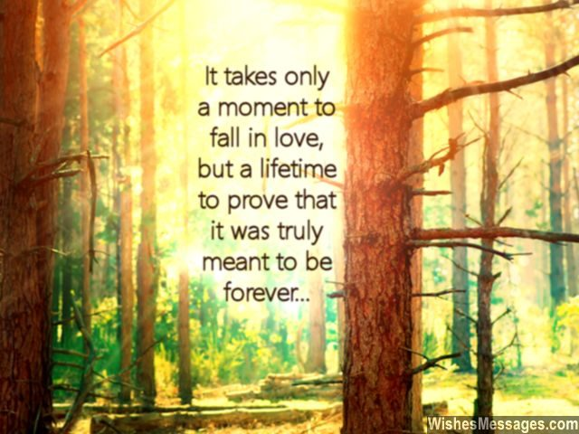 Falling in love quote lifetime to prove meant to be forever