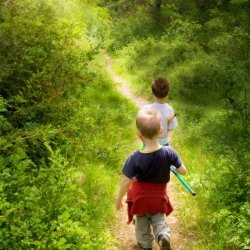 Brothers walking along a trail