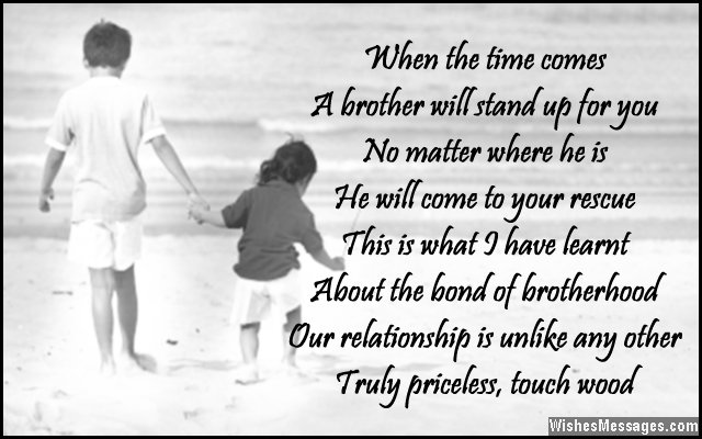 Brother And Sister Love Quotes Custom Top Hd Love Quotes  41 Brother Love Quotes Images