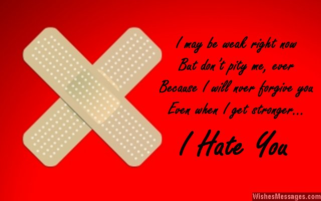 I hate you quote for a bully